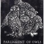 Paula-Koz-Parliament-of-Owls