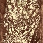 BIRDS.Otus Asio (n A)-1